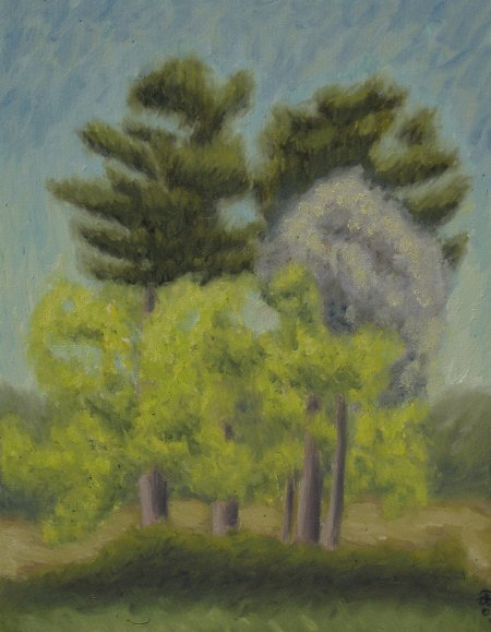 """Island of Trees"" Oil on Canvas, 20"" x 16"", 51 x 41 cm, yr 2009"