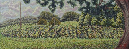"""Tobacco Field (Frazier Farm)"" Oil on Canvas 18.25"" x 48"" 46.35 x 121.92"", 2015"